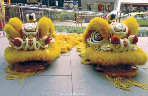 22 February 2013, 11.23am, lion heads ready for the festive Chinese Lunar New Year dance. Notice the polished forehead? That is actually a reflective surface. The lions also have a horn on their head. Photo: © TANG Portfolio